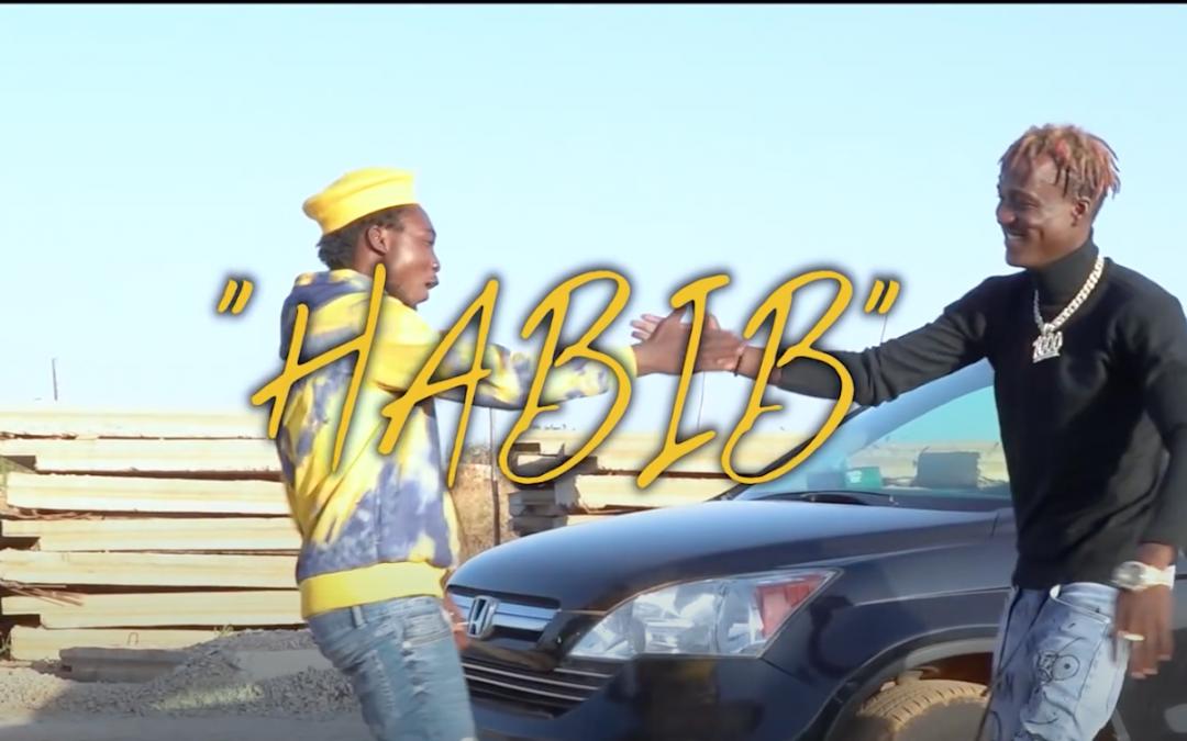 Habib ou la parodie de la chanson Jérusalema de Moussa Petit Sergent